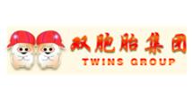 双胞胎集团